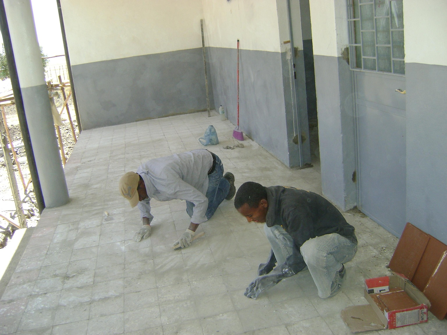 Proyectos de sanidad