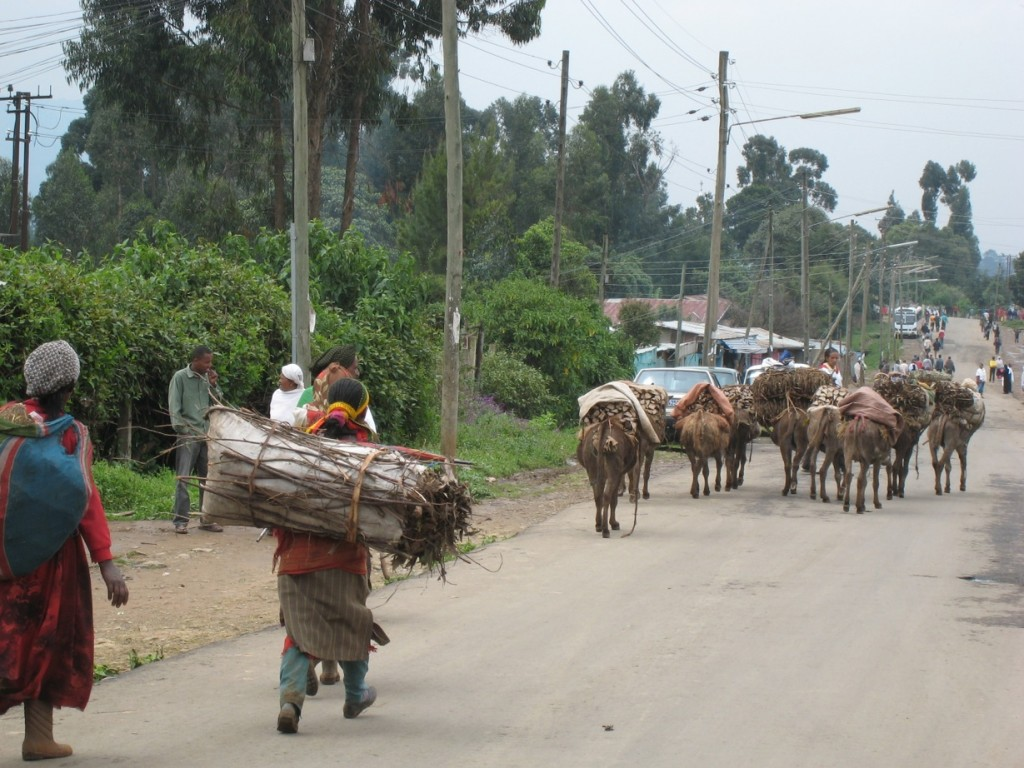 Te cuento Etiopía: monte Entoto